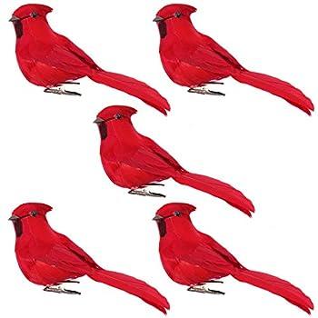 Best red bird christmas Reviews