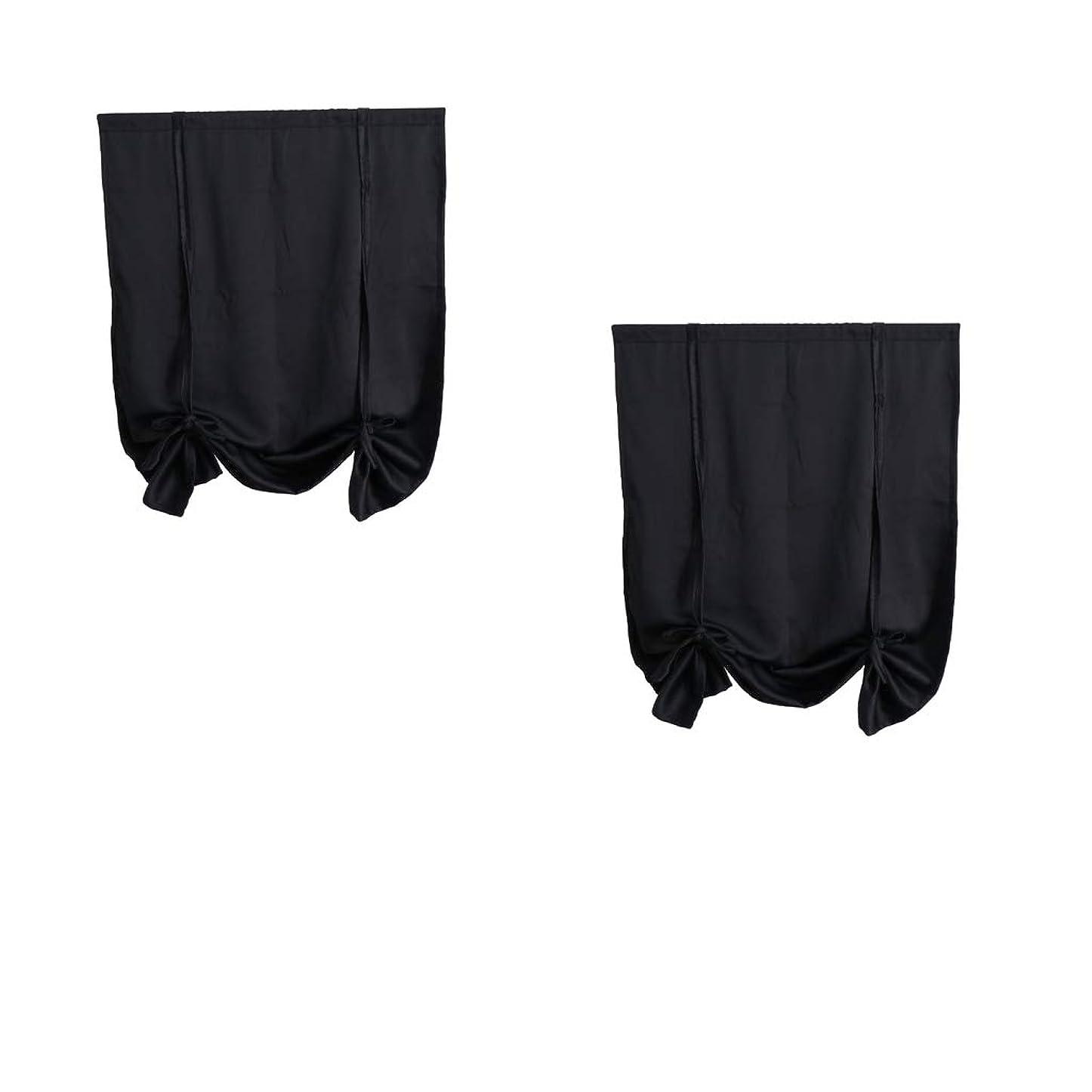 レーニン主義岸チャンスKESOTO ウィンドカーテン 遮光パネル UVカット 2枚 ブラック