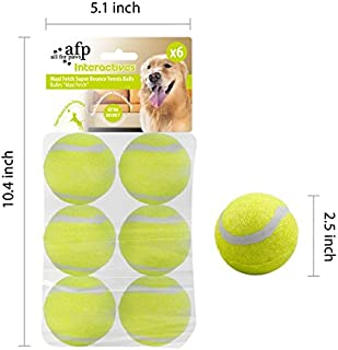 ALL FOR PAWS Hyperfetch Ultimate Throwing Toy (Maxi Ball 2.5 inch)