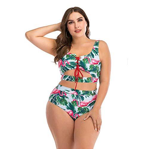 Bikini Grande Mujer Gorda Traje de baño de Mujer de Copa Grande Sexy Nadar