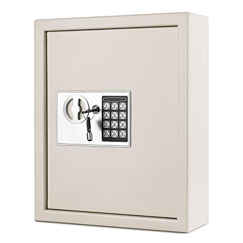 Flexzion Key Cabinet with Electronic Digital Lock, Wall Mounted Key Box 40 Key Capacity Colored Tags & Hooks - Safe Organizer, Security Storage Locker System for Homes, Hotels, Schools (Cream White)