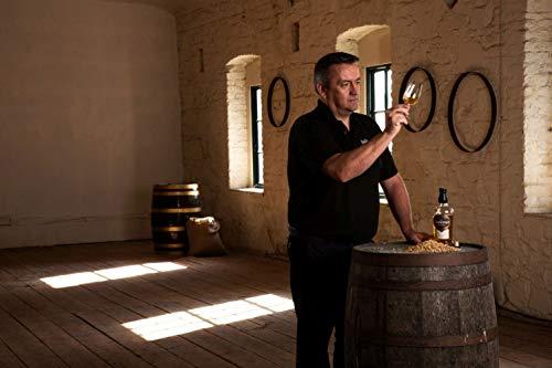 The Dubliner Irish Whiskey Liqueur 30% vol., Whiskeylikör mit Honig und Karamell-Geschmack (1 x0.7 l) - 3