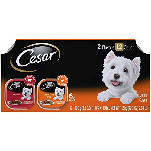 CESAR Soft Wet Dog Food Loaf in Sauce Beef and...