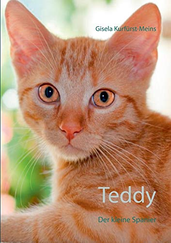 Teddy: Der kleine Spanier