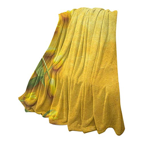 Anmaseven Yellow Soft Blanket Digital Printing Danish Dutch Tulips on Colored Wall Garden Floral Love Lily Herbs Artful Print Yellow Green 70' W x 94' L