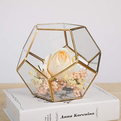 Hängepflanze Terrarium Glas Geometrisches Terrarium Glas Hängepflanze Tisch Sukkulenten Pflanzgefäß Farn Moos Display Box Blume Luft Pflanzgefäß Topf Container für Zuhause Dekoration, Gold-c, -