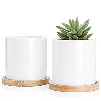 Greenaholics Succulent Plant Pots - 3 Inch Small White Ceramic Planter Mini Flower Containers Indoor with Drainage Hole and Bamboo Tray for Succulents or Cactus Set of 2