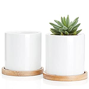 Succulent Plant Pots – 3 Inch Small Ceramic Cylindrical Planter Containers for Flowers or Cactus with Drainage Hole and Bamboo Tray – White Set of 2