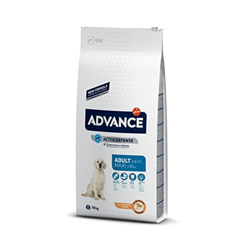 Advance Pienso Perro Maxi Adulto Pollo - 14000 gr