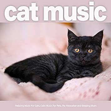 Cat Music: Relaxing Music For Cats, Calm Music For Pets, Pet Relaxation and Sleeping Music