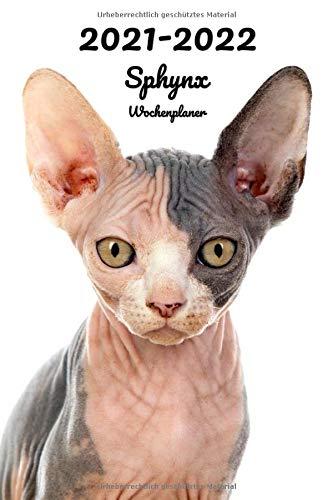 2021-2022 Sphynx Wochenplaner: 152 Seiten, DIN A5 | 2-Jahre Taschenkalender | 26 Monate | Terminplaner | Tagebuch | Terminkalender | Organizer für Katzenliebhaber