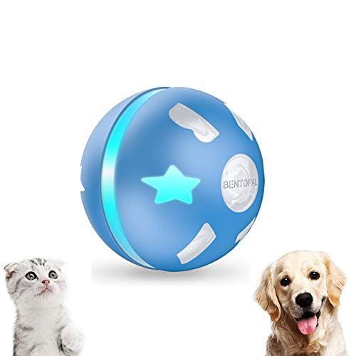 PetDroid Interactive Dog/Cats Ball Toys,Durable Motion Activated Automatic Rolling Ball Toys for Puppy/Small/Medium Dogs,USB Rechargeable (Blue) (Medium)