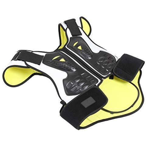 LAIABOR Professionelle Schutz Motorrad Jacke ATV Guard Shirt Gear Jacke Rüstung Street Motocross Protector Mit Rückenschutz Für Off-Road-Rennen Dirt Bike Skiing Skating,Blackandwhite,M