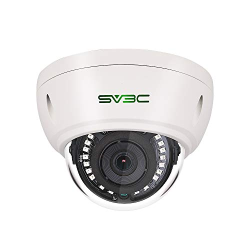 Best SV3C Dome Surveillance Camera