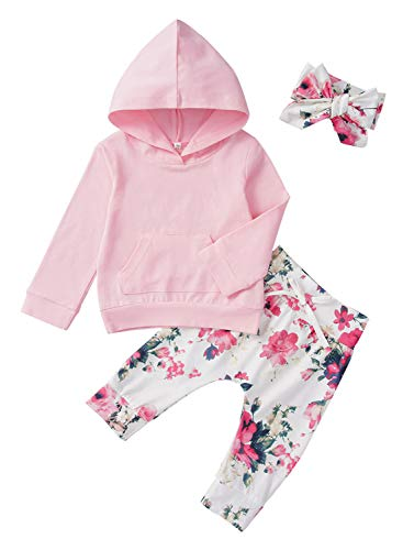 Baby Girls Boys Clothes Outfit Long Sleeve Hoodie Floral Sweatsuit Pants Set (6-12 Months, B-Flower)