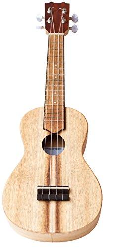 Voggenreiter su-1000Volt Gitarre
