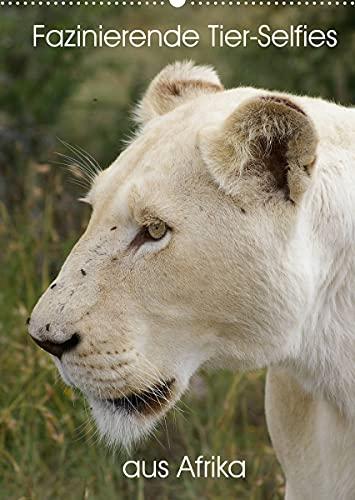 Fazinierende Tier-Selfies aus Afrika (Wandkalender 2022 DIN A2 hoch)