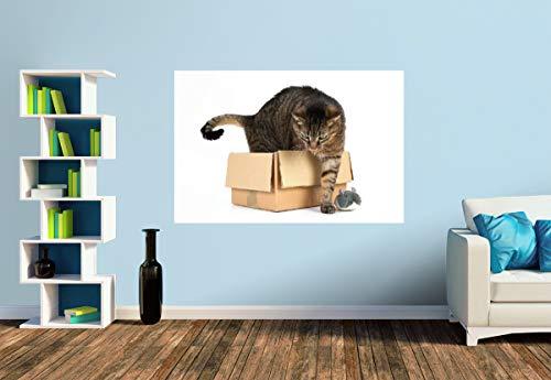 Premium Foto-Tapete Katze im Karton (versch. Größen) (Size S | 186 x 124 cm) Design-Tapete, Wand-Tapete, Wand-Dekoration, Photo-Tapete, Markenqualität von ERFURT