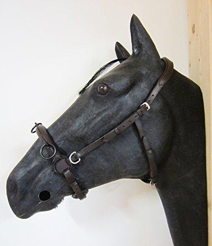 PS Pferdeartikel Gepolsterter Anatomischer Französischer Kappzaum Cavecon/Cavesson mit D-Ringen Größe Cob - Farbe Schwarz