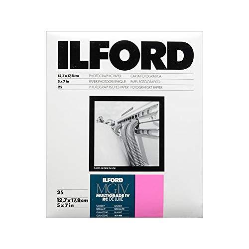25 hoja 4x5 Inch//10,2 x 12,7 CM Ilford delta 100 negro blanco película