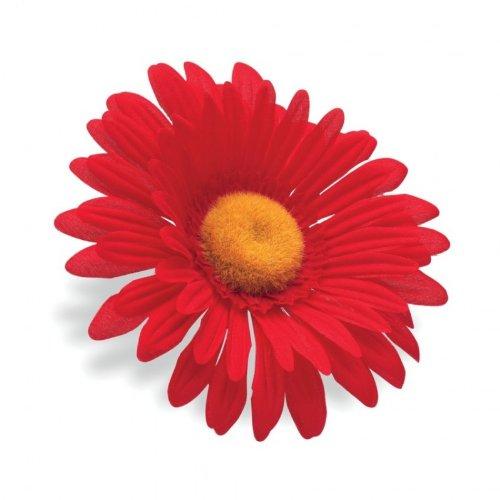 Electra manillar de sol flor rojo