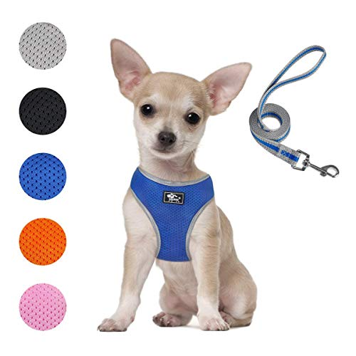 Puppy Harness and Leash Set - Dog Vest Harness for Small Dogs Medium Dogs- Adjustable Reflective Step in Harness for Dogs - Soft Mesh Comfort Fit No Pull No Choke (XS, Blue)