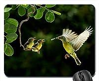 鳥野生動物赤ちゃん鳥マウスパッドマットマウスパッドホットギフト
