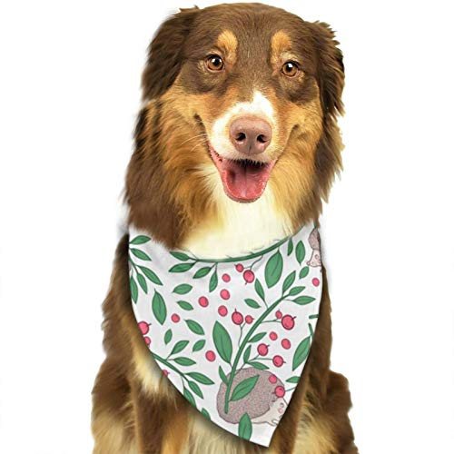 Cl4zyott Pañuelo para perro con diseño de ramitas de bayas y erizo