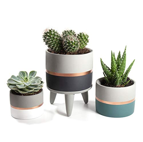 Set of 3 Grey Concrete Cement Indoor Plant Flower Pots with 1 Stand. For Succulent and Cacti in Home and Office. Each Pot is a Different Size; White, Teal, Dark Blue with Rose Gold and Grey detailing.