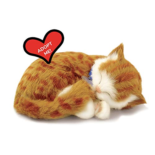 Original Petzzz Orange Tabby Realistic, Lifelike Stuffed Interactive Pet Toy, Companion Pet Dog with 100% Handcrafted Synthetic Fur – Perfect Petzzz