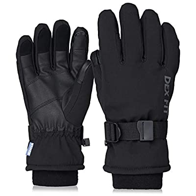 DEX FIT Cold Proof Warm Winter Outdoor Gloves WG201, Double Insulated Windproof, Comfortable Snug Finger Fit, Grip, Touchscreen, Durable Waterproof, Washable, Dexterity, Black Large 1 Pair