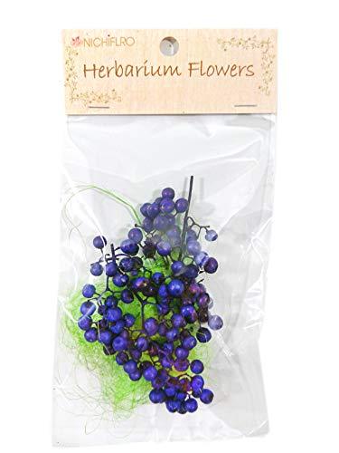 ニチフロ(Nichiflro) ハーバリウム用花材 ペッパーベリー ブルー