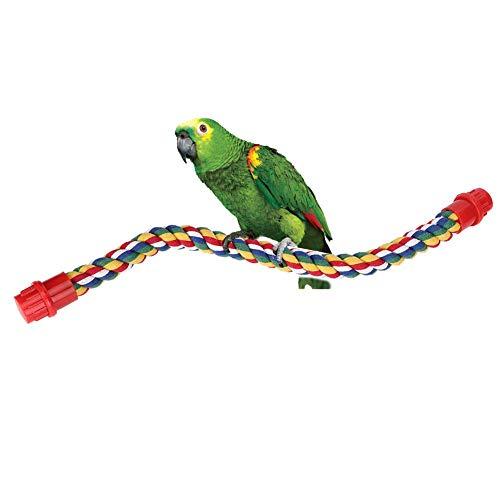 Percas de Cuerda de pájaros, Perca de Cuerda Espiral de Aves, Columpio...