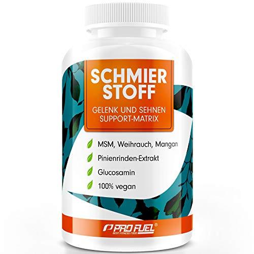 SCHMIERSTOFF   Hochwirksamer Gelenk Support mit Glucosamin, Weihrauch, Pinienrinde und Piperin   Das ORIGINAL von ProFuel   Monatspackung
