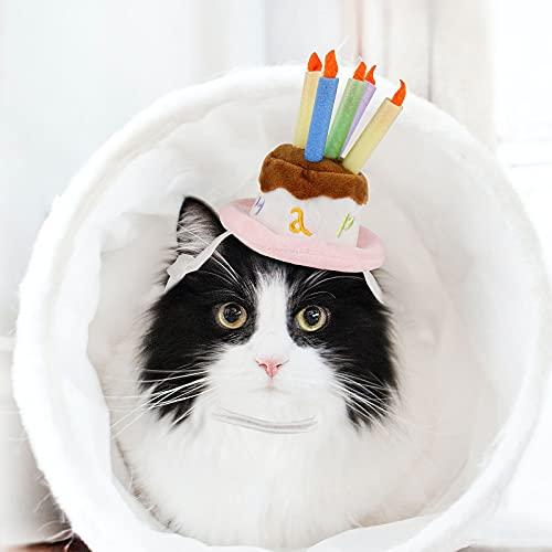 NAMSAN Hundegeburstag Hut Haustier Kuchen Hut Hunde Geburtstagshut Klein bis Großer Hunde/Katze Fuer Geburtstagsparty