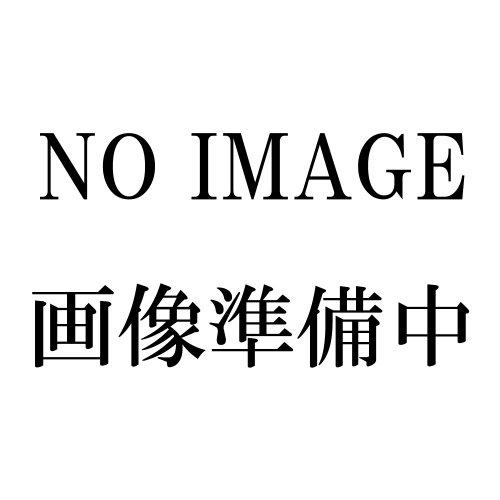 浅香工業(株) 金象 一輪車3才深型プロ パンクレス車輪付 181039