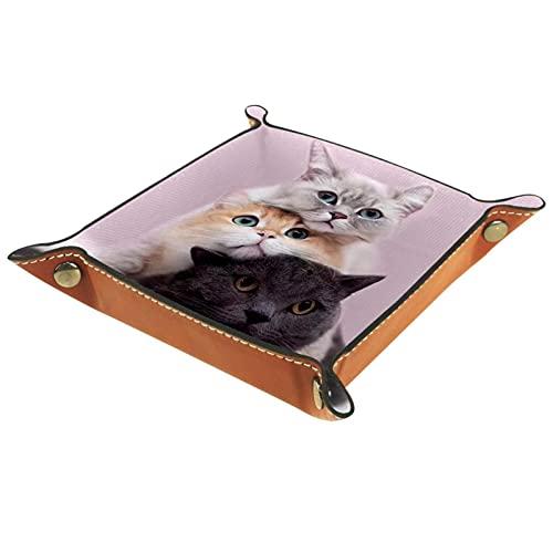 rogueDIV Bandeja plegable de cuero para dados con broches para DnD, juegos de mesa, almacenamiento de tres gatos