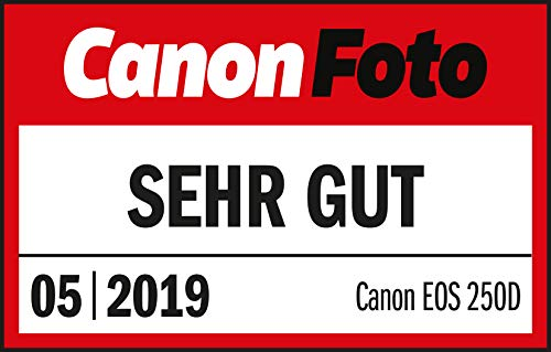 Canon EOS 250D Digitale Spiegelreflexkamera Gehäuse Body (24, 1 Megapixel, 7, 7 cm (3 Zoll) Vari-Angle Display, APS-C-Sensor, Dual Pixel CMOS AF, 4K, Full-HD, DIGIC 8, WLAN, Bluetooth), schwarz