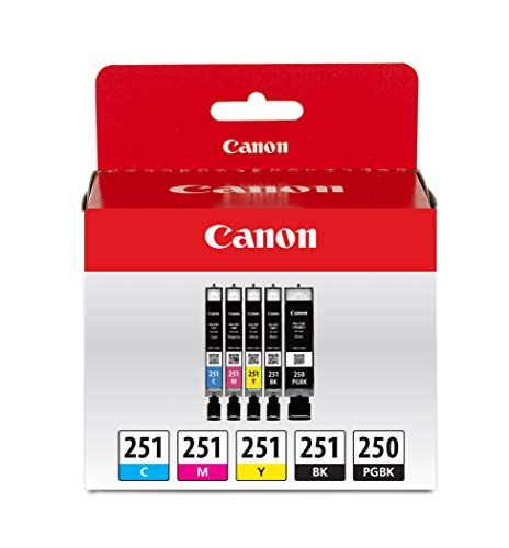 Canon PGI-250/ CLI-251 5 Color Amazon Pack