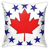 Fundas de almohada, diseño de bandera de los Estados Unidos y fundas de almohada decorativas, cuadrado con cremallera oculta para sofá, cama y coche