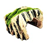 gazechimp Novedad Pet Reptil Escondite Cueva Pecera Decoración Material de resina Suministros para mascotas - F