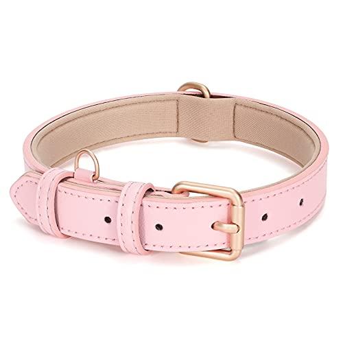 LEACOOLKEY Collar de piel para perros pequeños y medianos, ajustable, suave, transpirable, acolchado, con hebilla de aluminio, resistente al agua