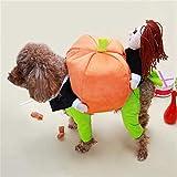 TXZZ Chien vêtements Animal familier drôle de Costume de Citrouille Cosplay Costume pour Les Chats Halloween Vêtements de Noël...