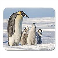 マウスパッド南極皇帝ペンギン3雛ハビタットベイかわいい冷凍マウスパッドノートブック、デスクトップコンピューターマウスマット、オフィス用品