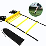 Alyoen Agility Ladder, Adjustable 6M 12-Rung Speed Training Ladder with Carry Bag