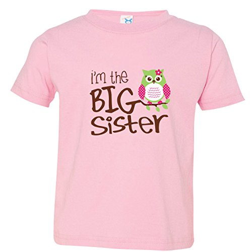 Nursery Decals and More Baby Girls Big Sister Shirt, Size 3, I'm The Big Sister