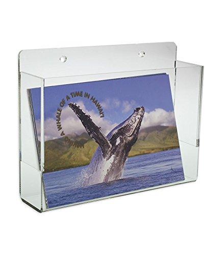 Source One LLC Premium Wall Mount Postcard Holder Display Rack (1-Pack Clear)