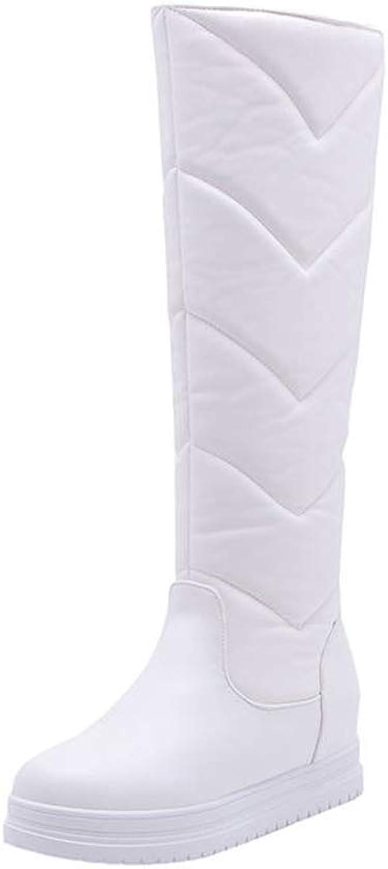 Hoxekle Keep Warm Winter Snow Boots Women Waterproof Slip On Simple Platform shoes Comfortable Knee High Boots