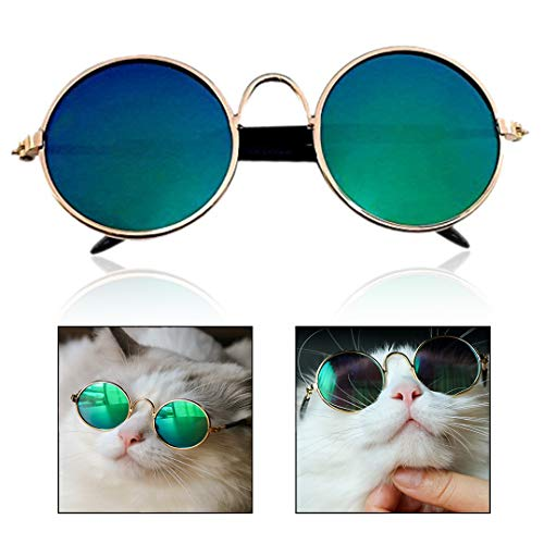 Xrten Haustier Sonnenbrillen,Mode Hunde Katzen Runde Brillen Pet Fotos Requisiten