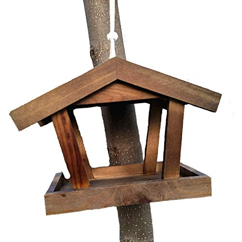 JXXDDQ Mangeoires d'oiseaux Oiseau Suspendu Mangeoire À Oiseaux pour Le Jardin